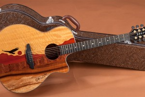 Why Is Guitar Case Necessary For Your Guitar?