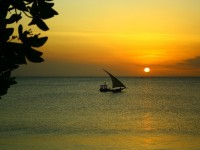 5 Reasons Why You Should Visit Zanzibar